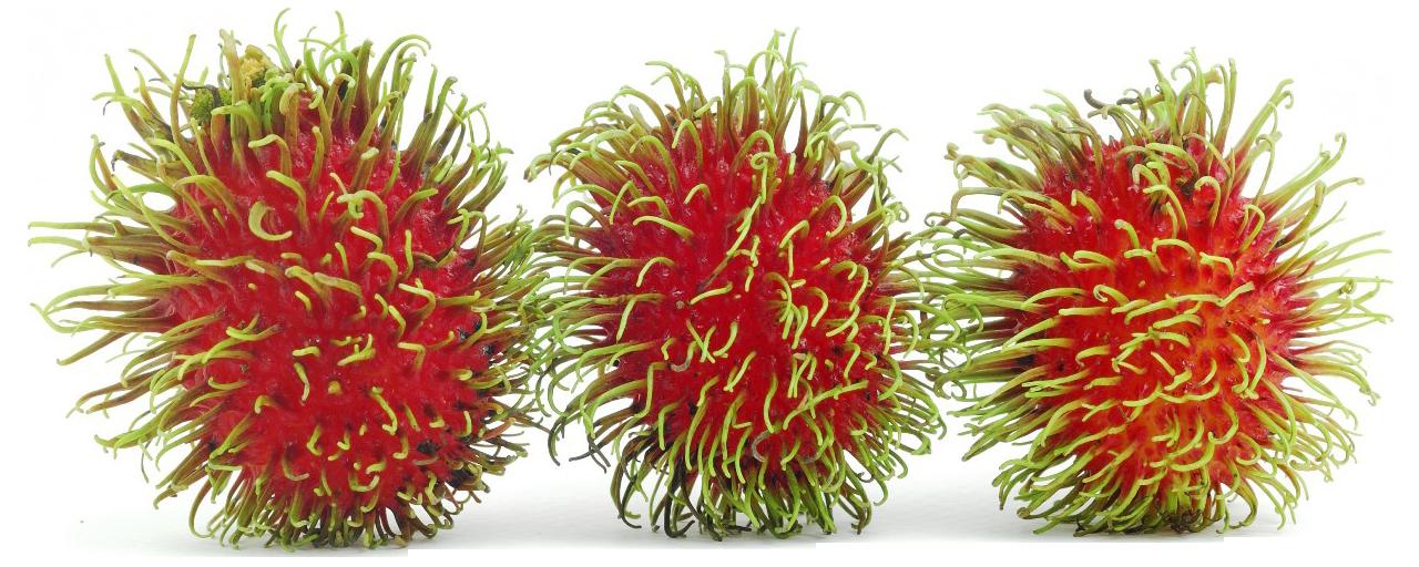PNG Rambutan - 67853