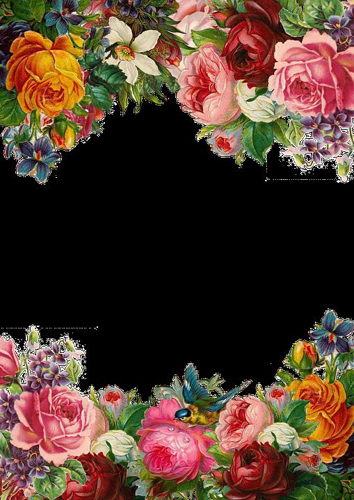 Blomst, Rose, Ramme, Indsamling, Vintage, Sammensætning - PNG Rammer Med Blomster