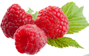 Rraspberry PNG image - PNG Raspberry