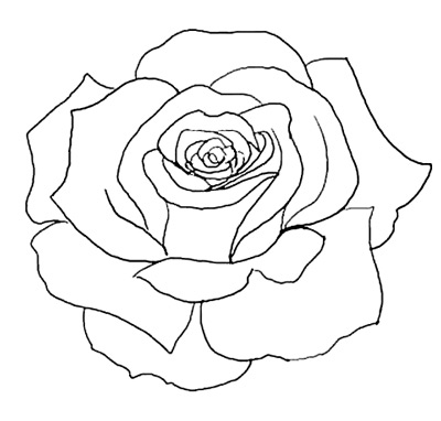 PNG Rose Outline Trans...