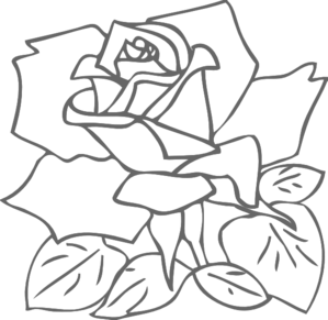 Png Rose Outline Transparent Rose Outline Png Images Pluspng