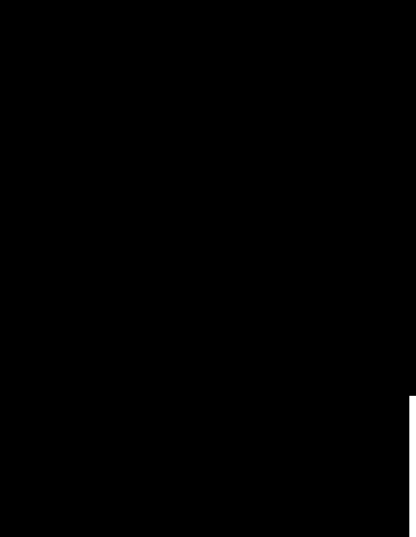 PNG Rose Outline - 75380