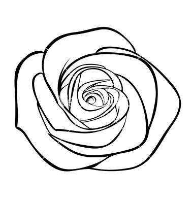 PNG Rose Outline - 75375