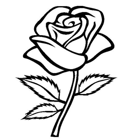 PNG Rose Outline - 75377