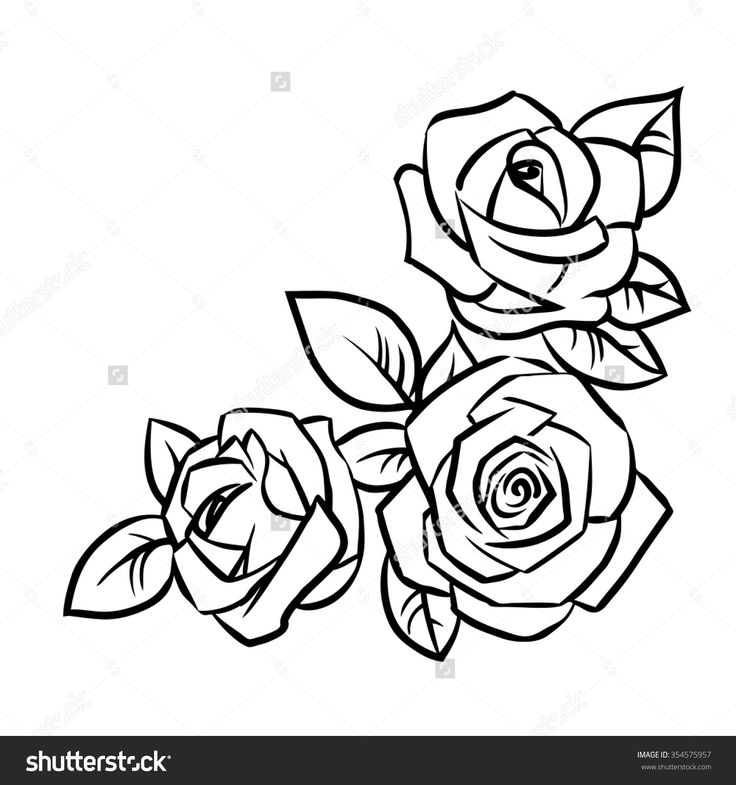 Line Art Rose Tattoo : Png rose outline transparent images