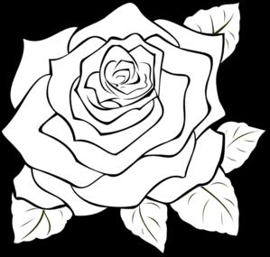 PNG Rose Outline - 75370