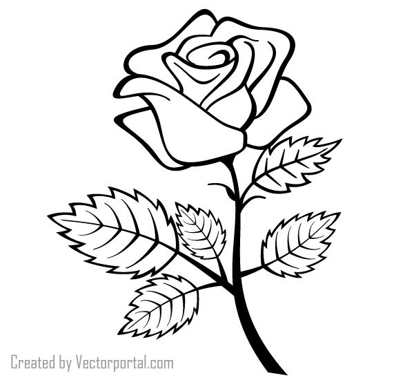 PNG Rose Outline - 75378
