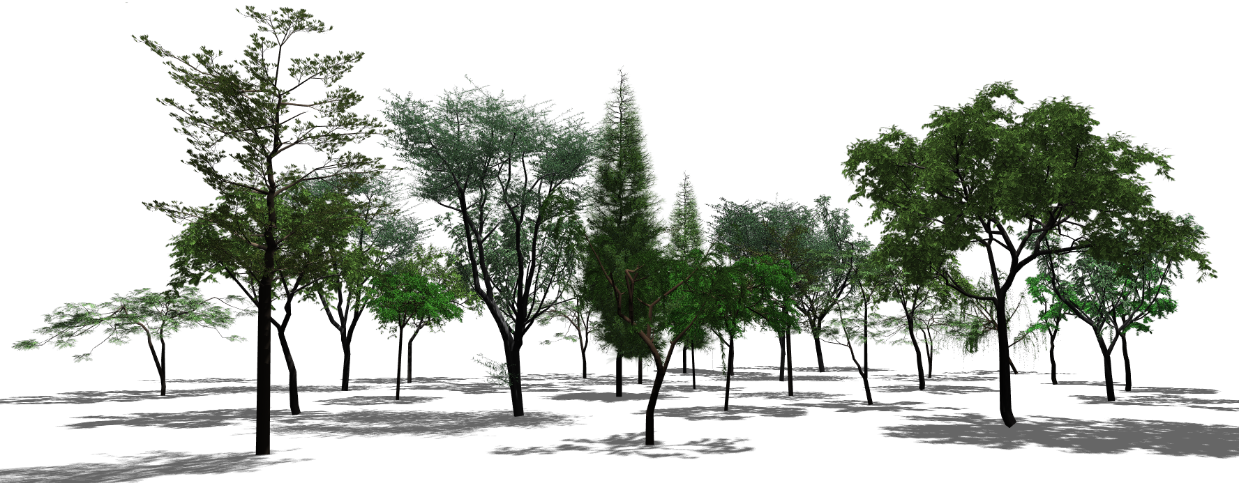 PNG Scene Transparent Scene.PNG Images. | PlusPNG for Park Tree Png  599kxo