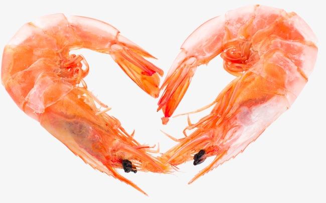 PNG Shrimp - 84510