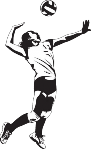 Logo: Siatkówka - PNG Siatkowka