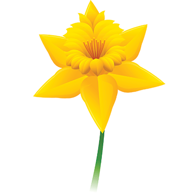 pin Single clipart yellow flower #13 - PNG Single Flower