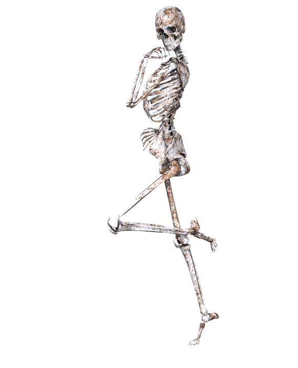 PNG Skeleton Bones - 87161
