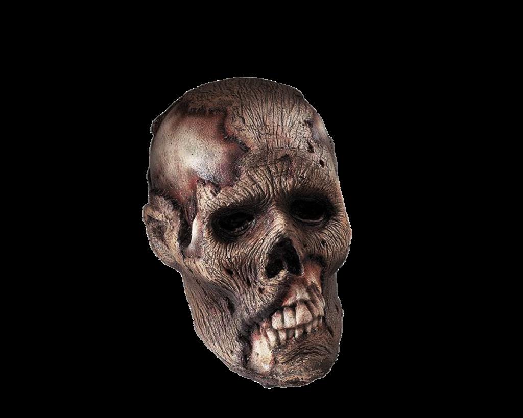 Download PNG image - Skeleton Head Png Clipart - PNG Skeleton Head