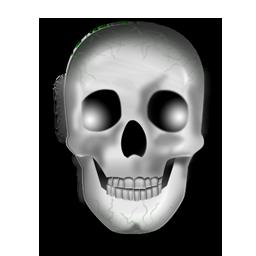 halloween, head, skeleton, skull icon. Download PNG - PNG Skeleton Head