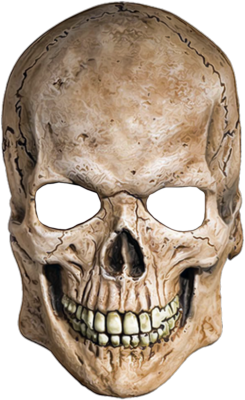 Skull PNG image - PNG Skeleton Head