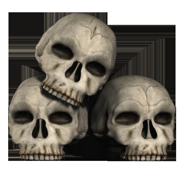 PNG Skeleton Head Transparent Skeleton Head.PNG Images. | PlusPNG