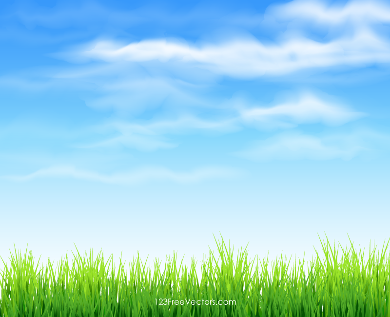 Sky and Grass Background - PNG Sky Background