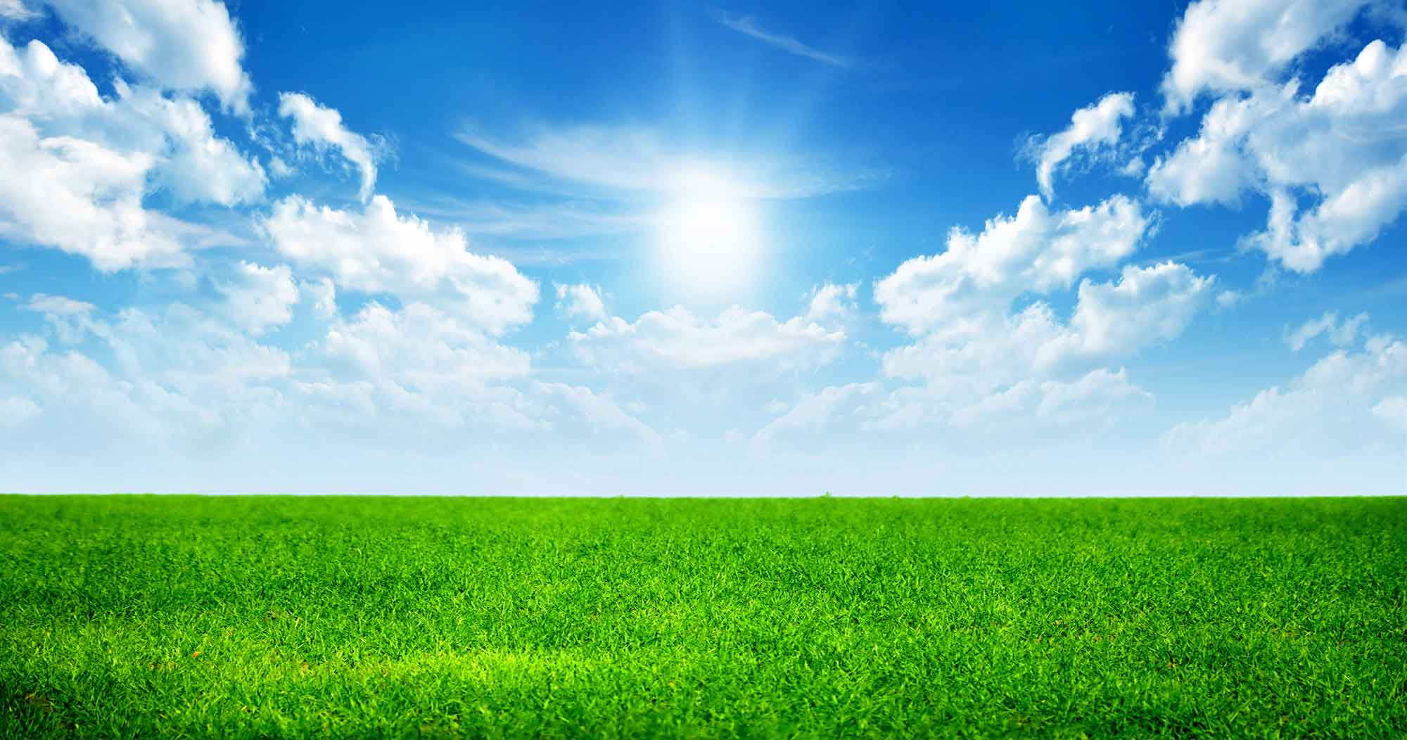Wallpapers For u003e Green Grass And Sky Background - PNG Sky Background
