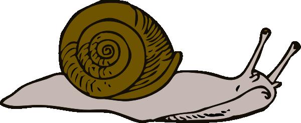 slug clipart #1237915744203031815johnny_automatic_snail_2 - PNG Slug