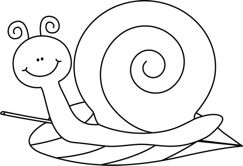 Black and White Snail on a Leaf - PNG Snail Black And White