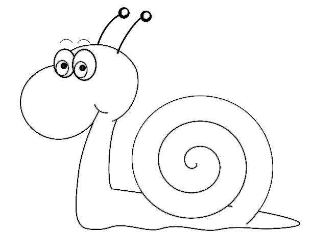 pin Mollusc clipart black and white #10 - PNG Snail Black And White