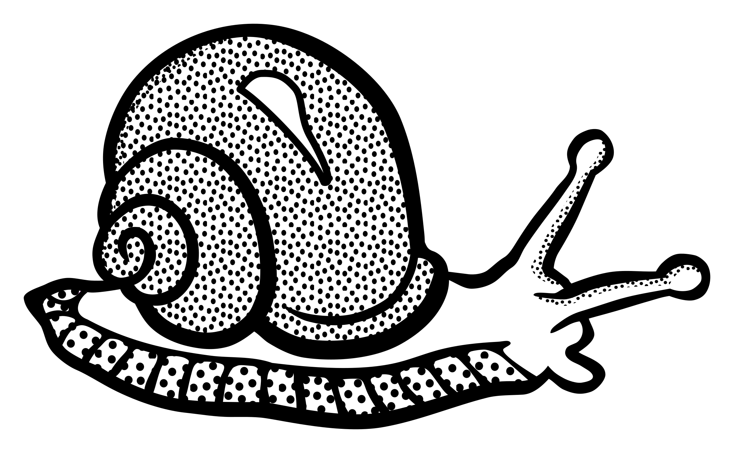 PNG Snail Black And White - 86826