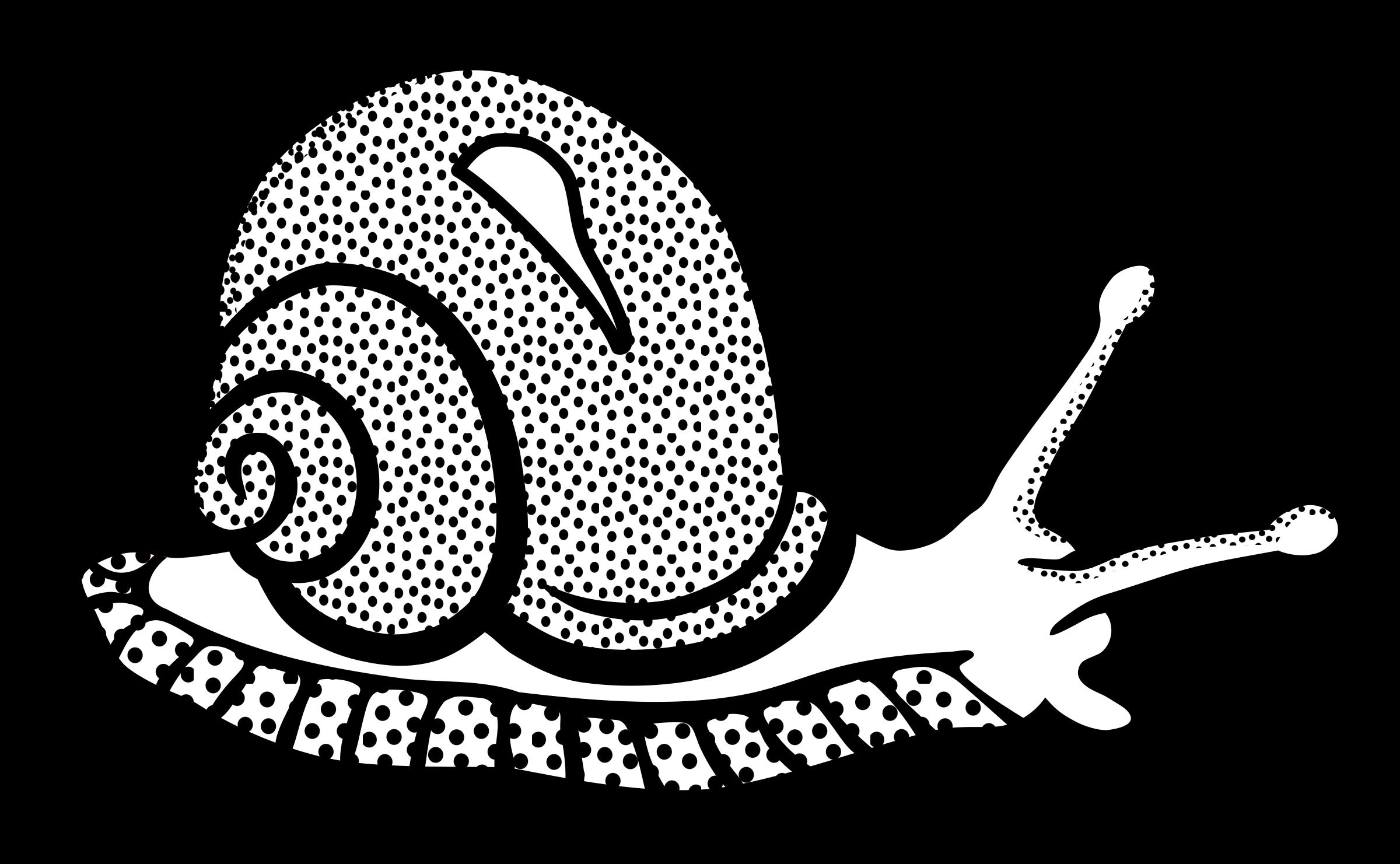 . PlusPng.com snail clip art images hd PlusPng.com  - PNG Snail Black And White