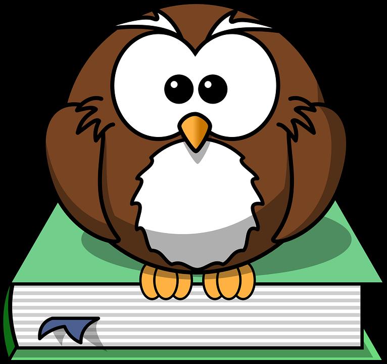 Książka, Sowa, Mądrość, Wiedzy, Siedzieć, Stare, Komiks - PNG Sowa