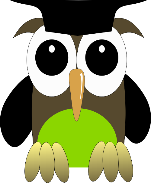 PNG Sowa - 86578