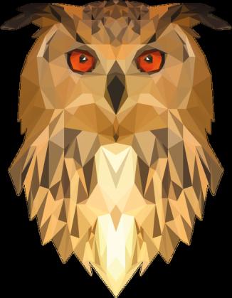 QTshop - SOWA owl bluza męska czarna i biała - PNG Sowa