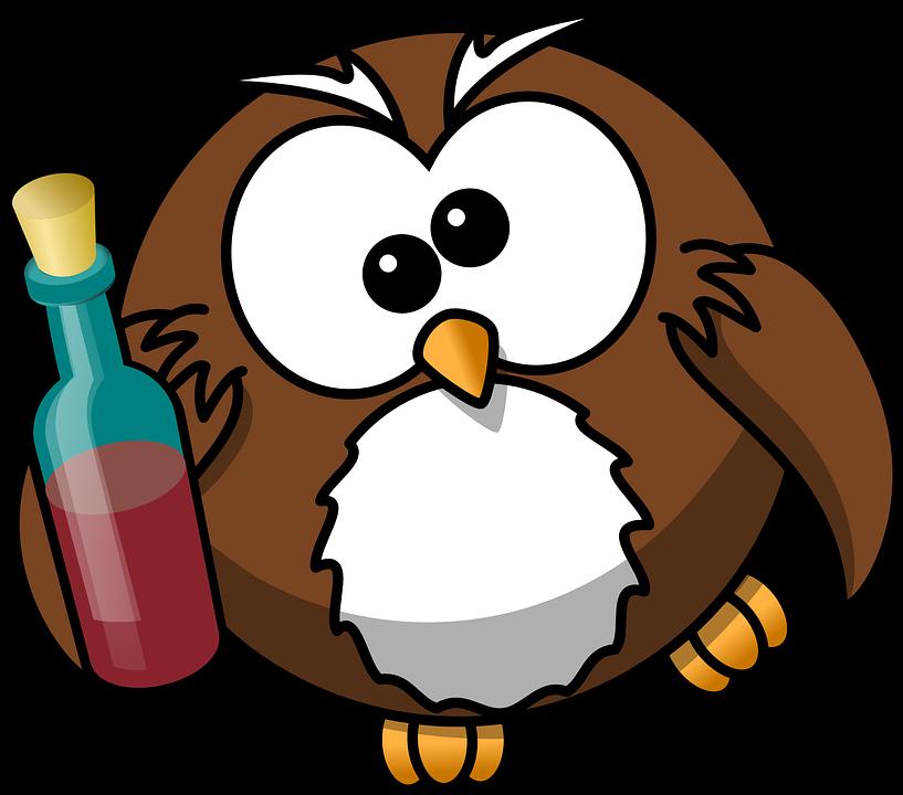 Sowa, Pijany, Alkohol, Zwierząt, Piwo, Ptak, Butelka - PNG Sowa