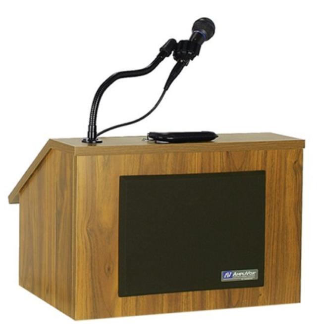 PNG Speaker At Podium - 86467