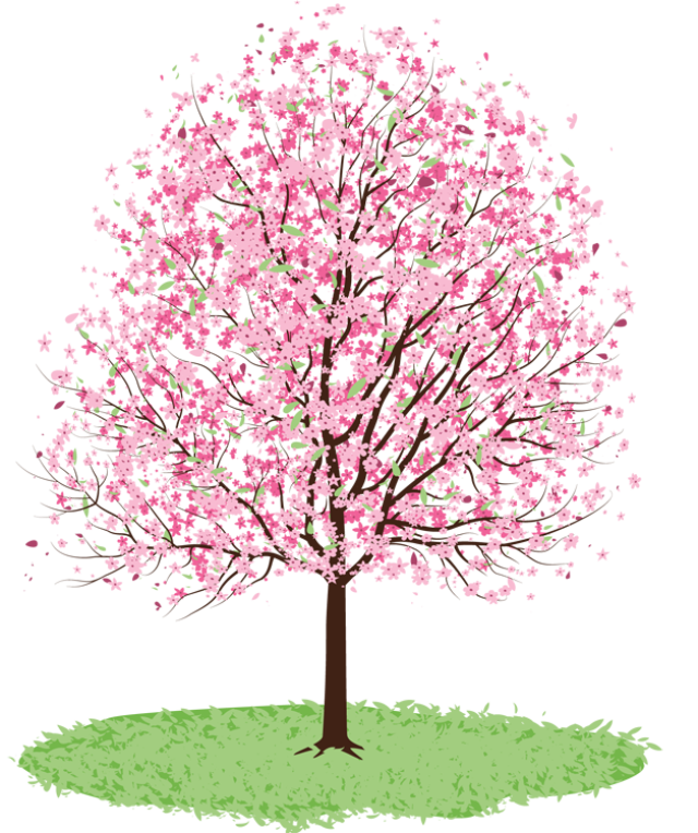 Spring tree free clipart - PNG Spring Tree