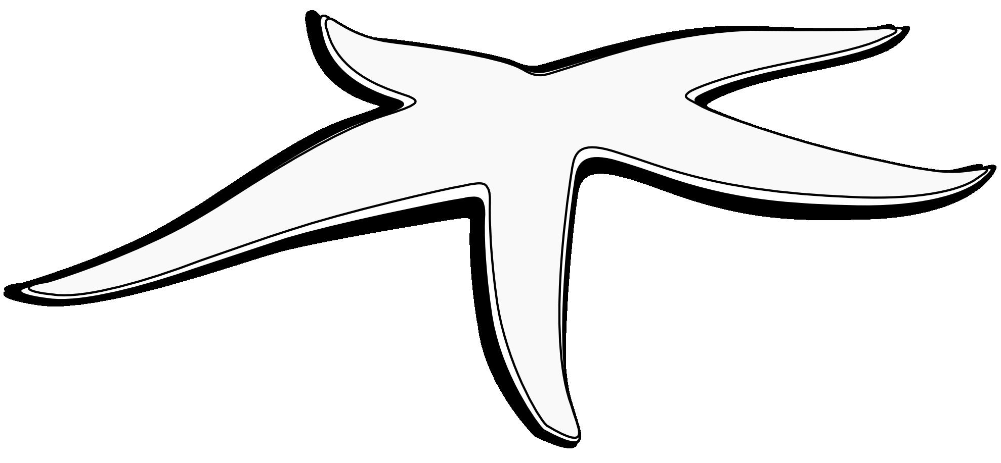 PNG Starfish Black And White - 59848