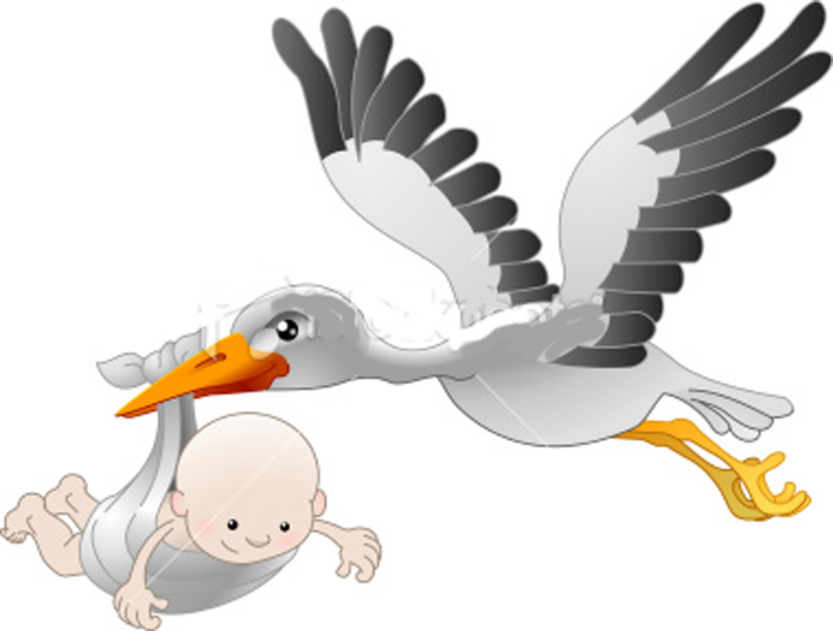 Storch Png image #18389 - PNG Stork