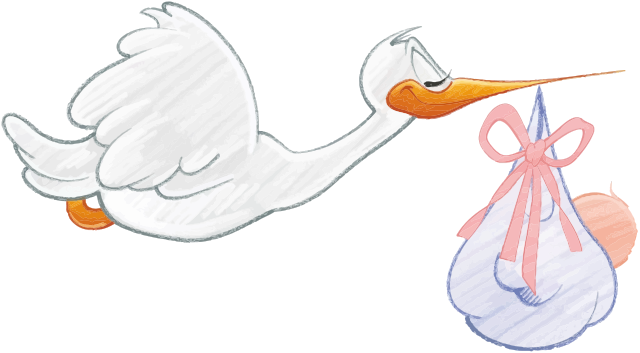 Stork Carrying Baby Girl - /people/baby/stork/Stork_Carrying_Baby_Girl.png .html - PNG Stork