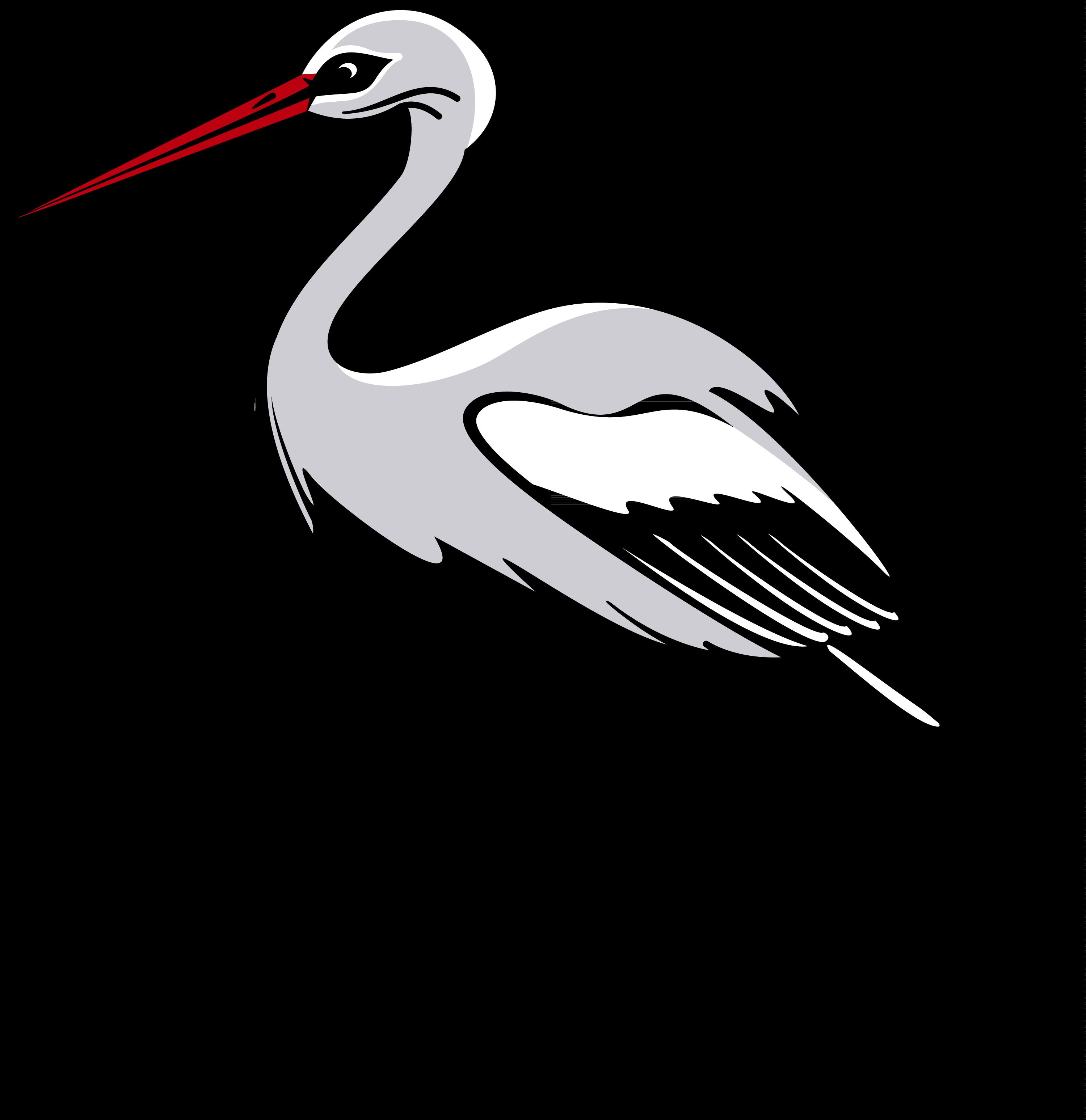 Stork PNG - PNG Stork