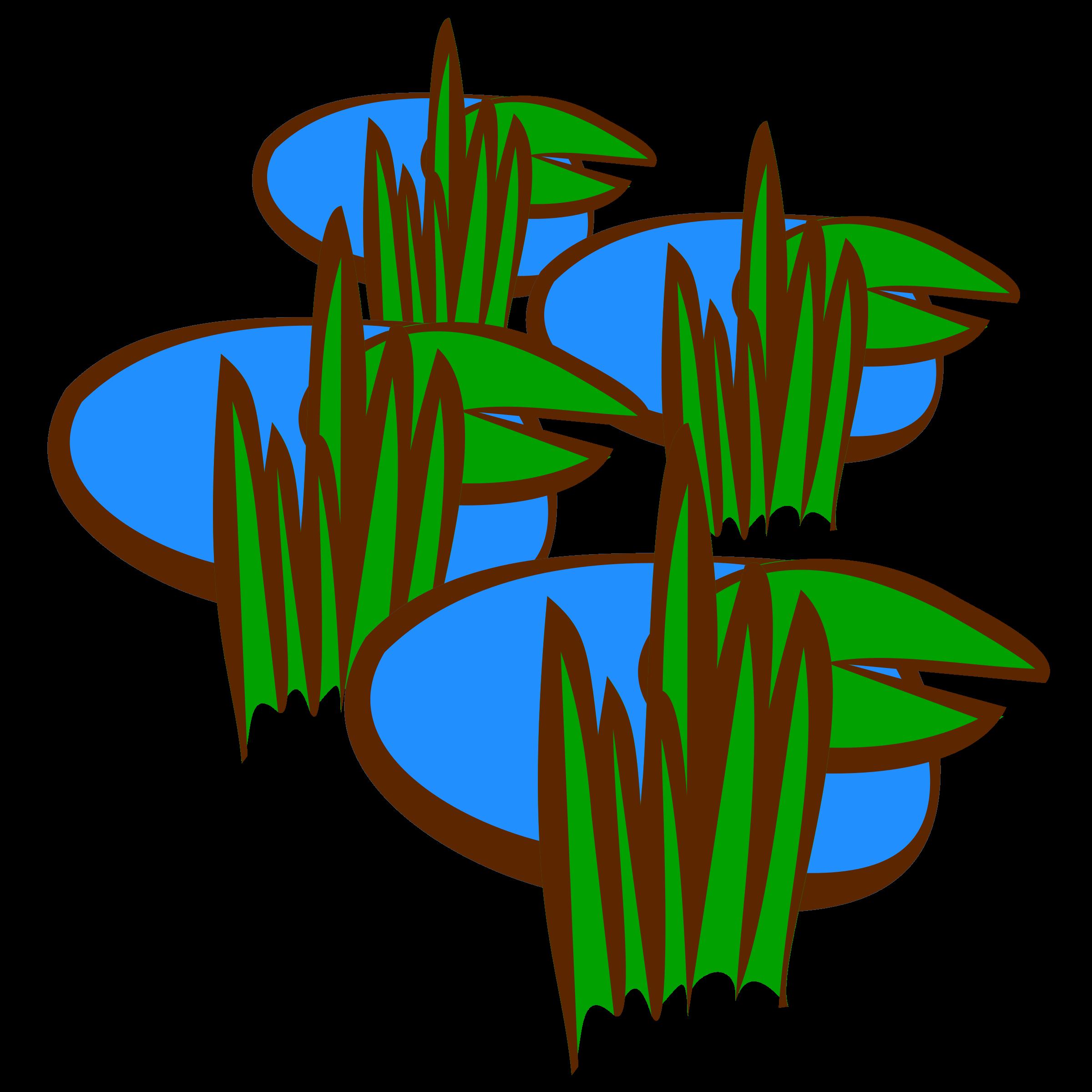 PNG Swamp - 57927
