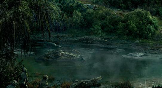 PNG Swamp - 57930
