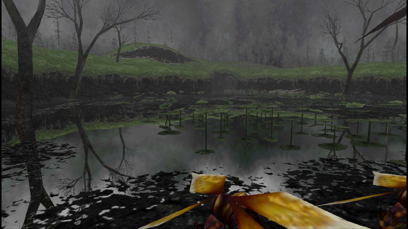 PNG Swamp - 57934