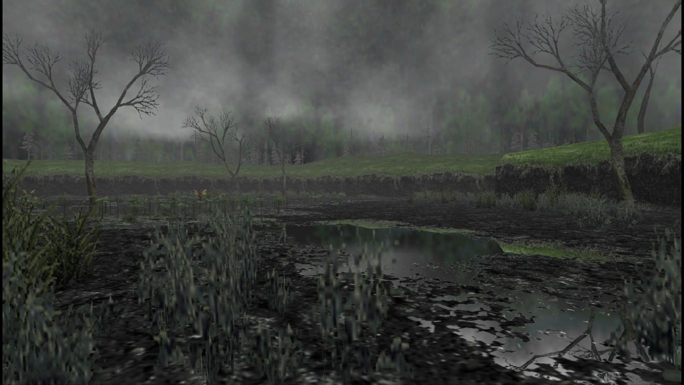 PNG Swamp - 57920