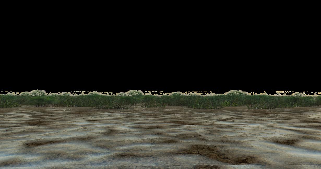 PNG Swamp - 57918