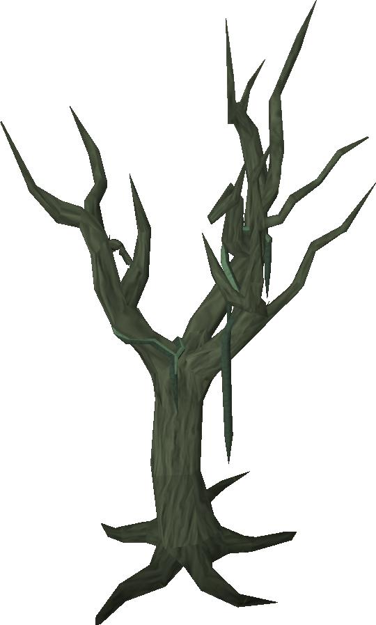 PNG Swamp - 57929