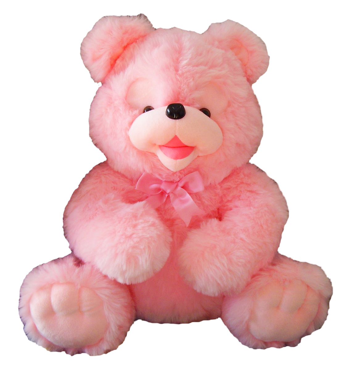 PNG Teddy - 57606