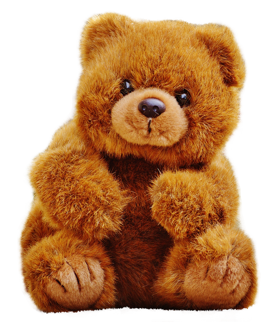 PNG Teddy - 57604