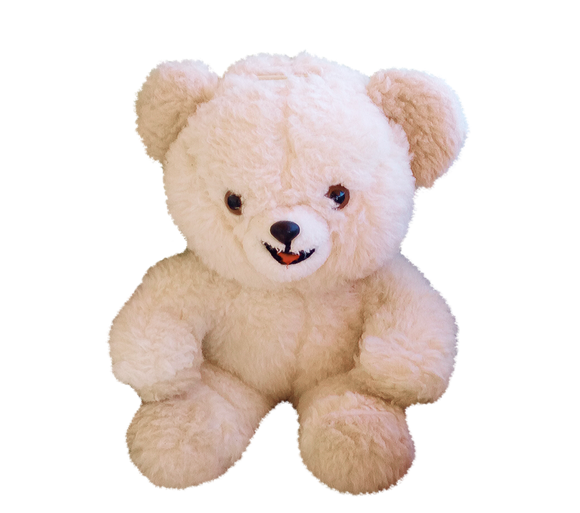 PNG Teddy - 57611