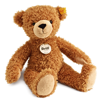 PNG Teddy - 57598