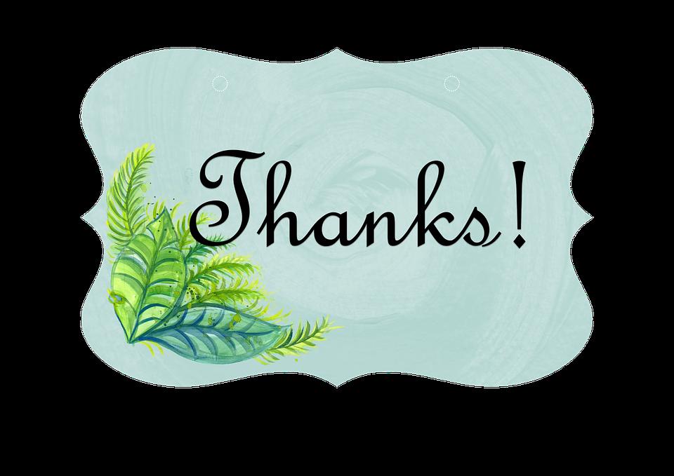 Terima Kasih, Label, Kartu, Tanda, Pernikahan, Acara - PNG Terima Kasih