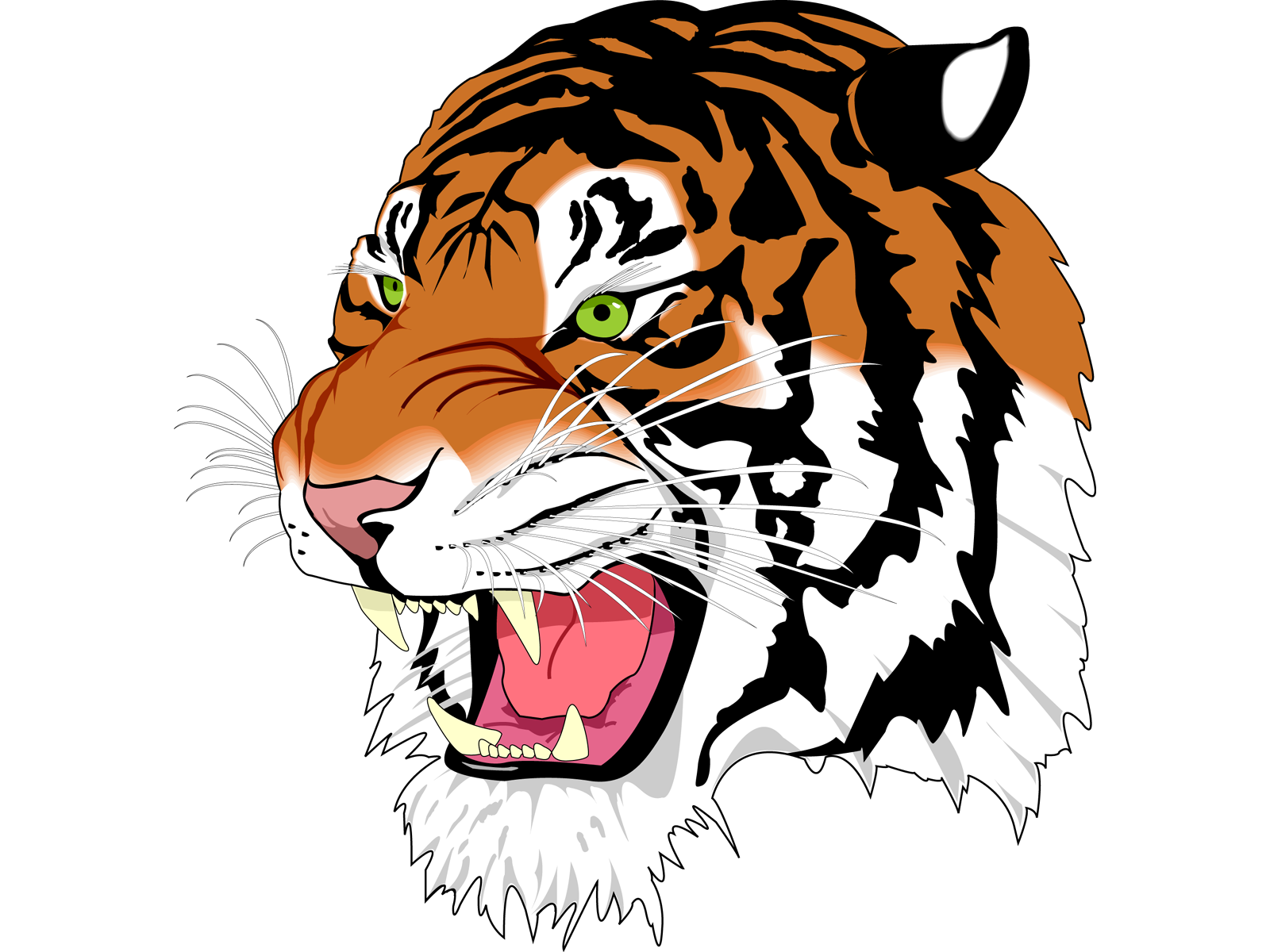 Tiger Face Fire Effects Image