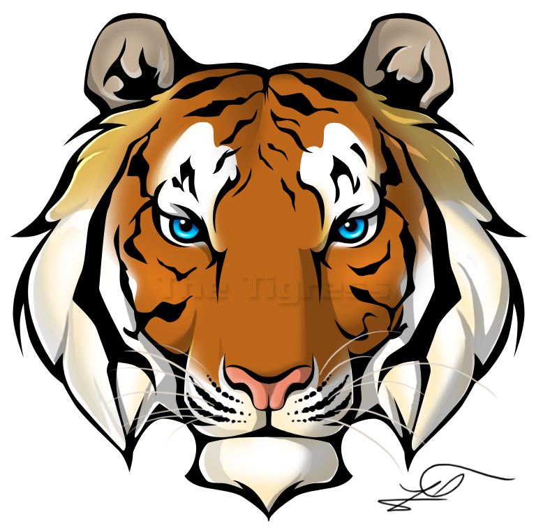 PNG Tiger Face - 58685